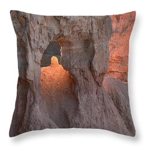 Landscape Throw Pillow featuring the photograph Sunrise Detail Bryce Canyon by Sandra Bronstein