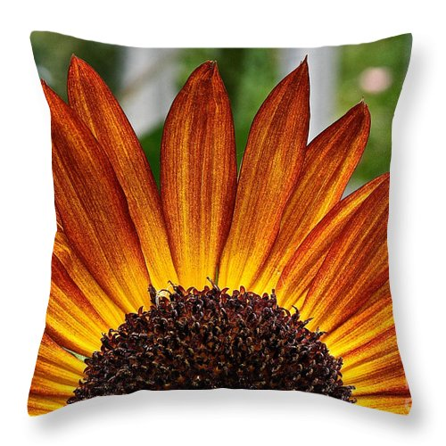 Outdoors Throw Pillow featuring the photograph Sunrise Floral by Susan Herber