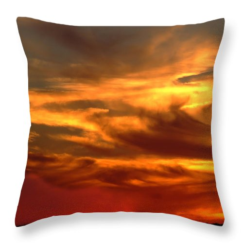 Bull At Sunset On Mountain Countryside Throw Pillow featuring the photograph Sunset Bull by Cliff Norton