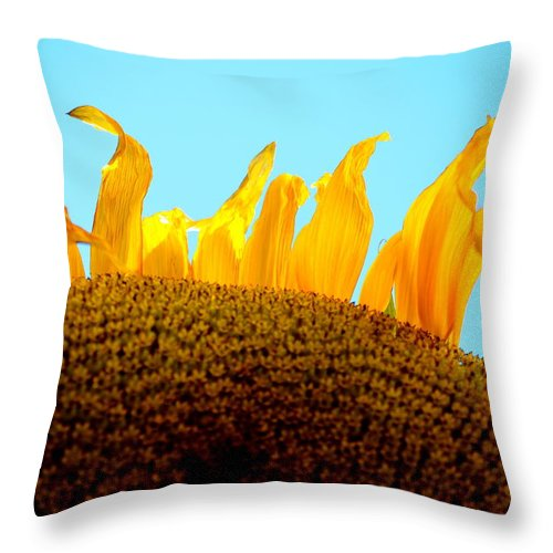 Sunrise Throw Pillow featuring the photograph Sunset by Gregory Merlin Brown
