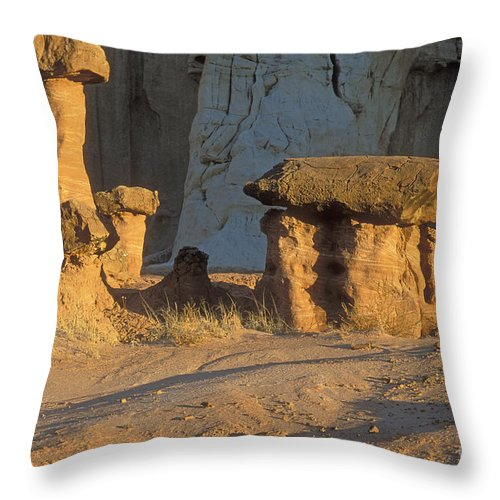 Bronstein Throw Pillow featuring the photograph Sunset In Paria Canyon Wilderness by Sandra Bronstein