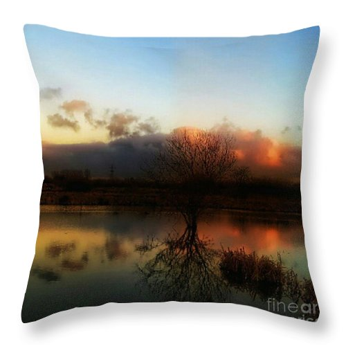 1stangel Throw Pillow featuring the photograph Sunset Reflections by Isabella F Abbie Shores