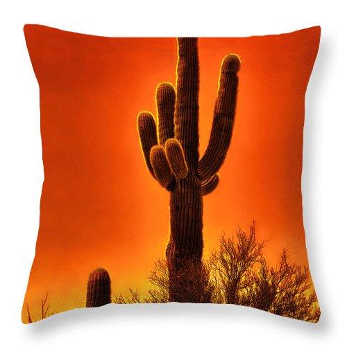 Desert Throw Pillow featuring the digital art Sunset Silhouette by Rick Wicker