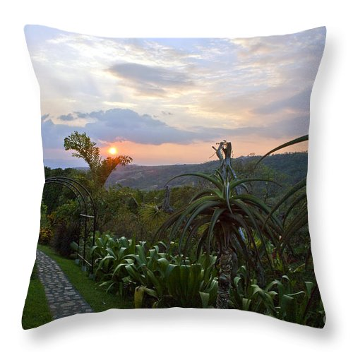 Costa Rica Throw Pillow featuring the photograph Sunsetting Over Costa Rica by Madeline Ellis