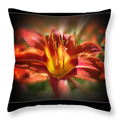 Sunshine Lily Throw Pillow featuring the photograph Sunshine Lily by Heinz G Mielke