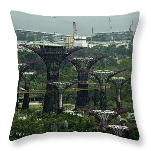 Asia Throw Pillow featuring the photograph Supertrees At The Gardens By The Bay In Singapore by Ashish Agarwal