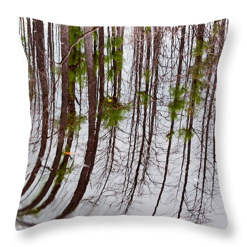 Nature Throw Pillow featuring the photograph Swamp Reflection by Kenneth Albin