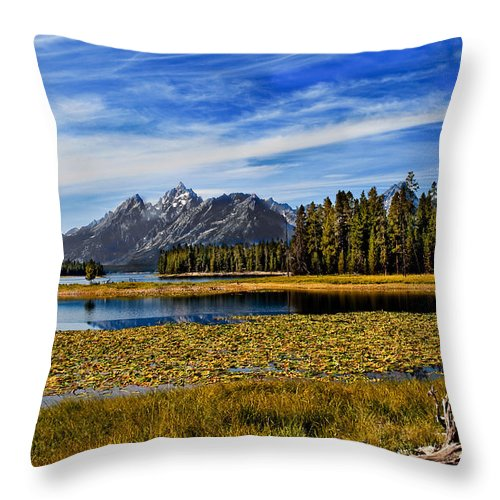 Grand Tetons Throw Pillow featuring the photograph Swan Lake by Robert Bales
