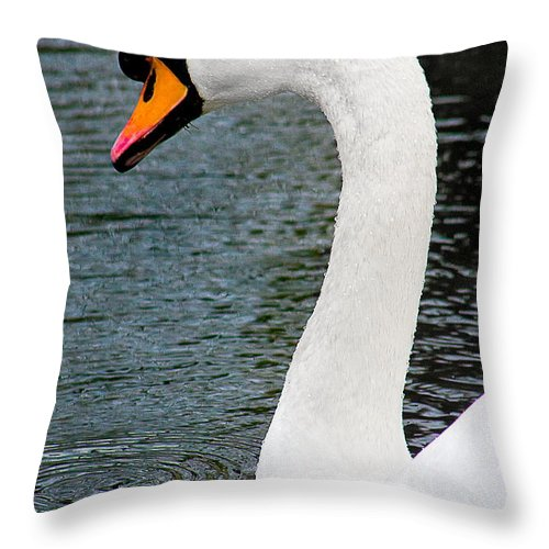 Swan Throw Pillow featuring the photograph Swansong by Burney Lieberman