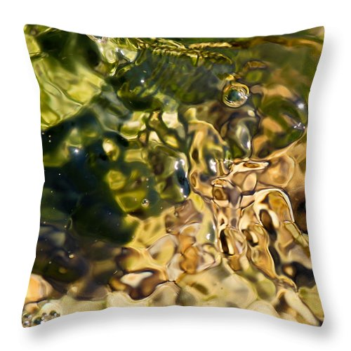 Water Throw Pillow featuring the photograph Sway by Elizabeth Hart