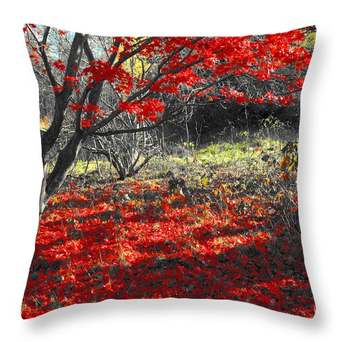 Red Throw Pillow featuring the photograph Sweetest Goodbye by Trish Hale