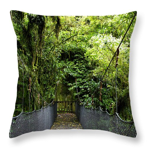 Dense Throw Pillow featuring the photograph Swingbridge by Les Cunliffe