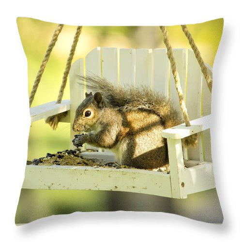 Squirrel Throw Pillow featuring the photograph Swingin Squirrel Robber by Bill Tiepelman