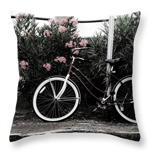 Charleston Throw Pillow featuring the photograph Taking A Break by Jessica Brawley