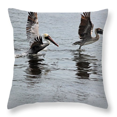 Pelican Throw Pillow featuring the photograph Taking Off by Suzanne Gaff