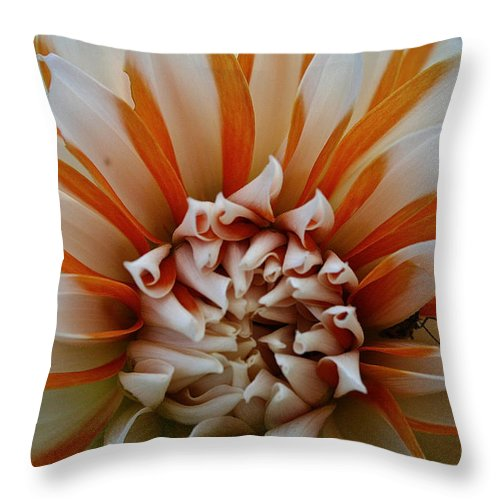 Landscape Throw Pillow featuring the photograph Tangerine Tinged by Susan Herber