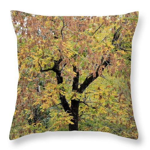 Tannehill Gold Throw Pillow featuring the photograph Tannehill Gold by Maria Urso