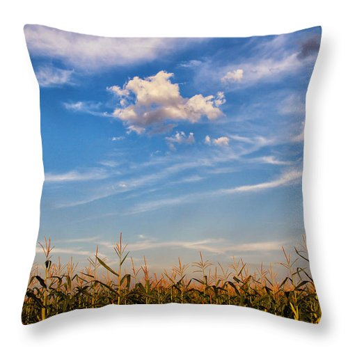 Tassels And Sky Throw Pillow featuring the photograph Tassels And Sky by Rachel Cohen
