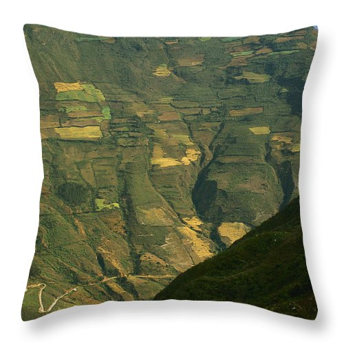 Color Image Throw Pillow featuring the photograph Terraced Fields Above Canyon Draining by Gordon Wiltsie
