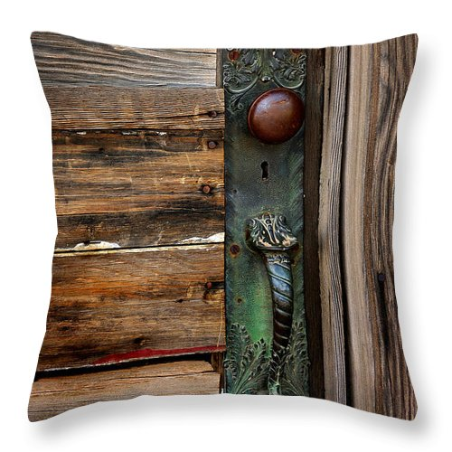 History Throw Pillow featuring the photograph Textured Elegance Of The Past by Vicki Pelham