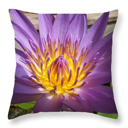 Flowers Throw Pillow featuring the photograph Thai Colours 3 by Lyle Barker