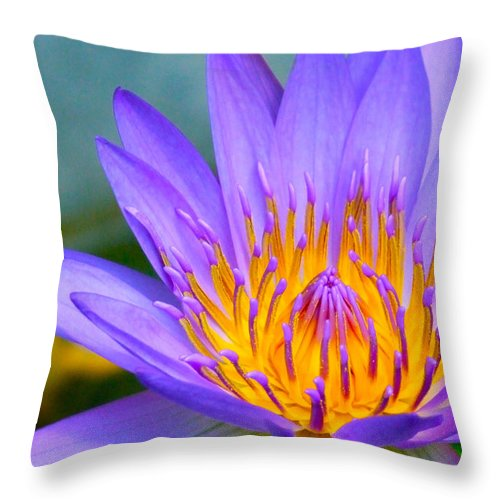 Flowers Throw Pillow featuring the photograph Thai Colours by Lyle Barker