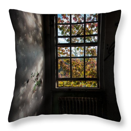 Autumn Throw Pillow featuring the photograph The Autumn Cries by Gary Heller