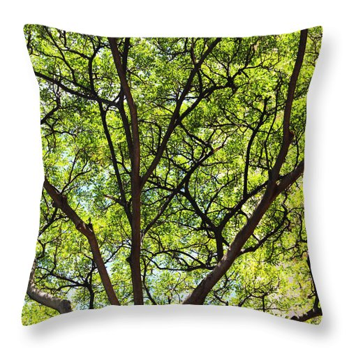 Tree Throw Pillow featuring the photograph The Beauty Of Nature by Kerri Ligatich