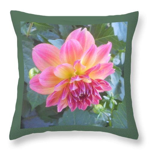 Flower Throw Pillow featuring the photograph The Beauty Of Spring by Diannah Lynch