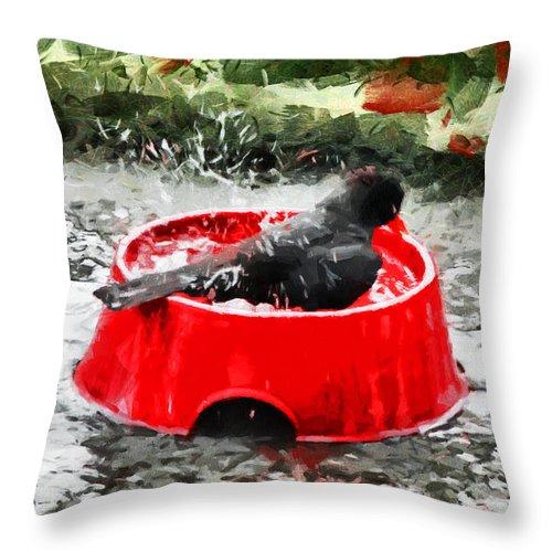 Bird Throw Pillow featuring the photograph The Birdbath by Steve Taylor