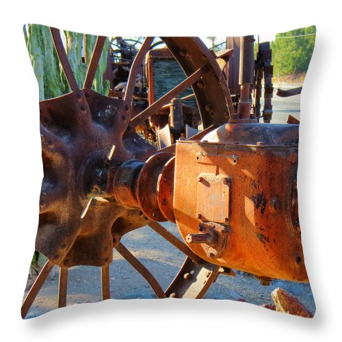 Case Throw Pillow featuring the photograph The Case Left Behind by Diane Wood