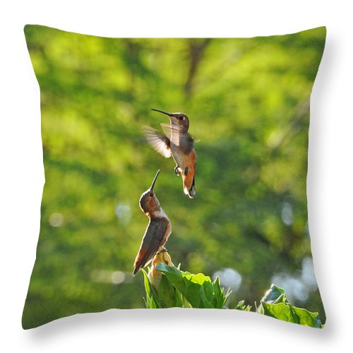 Hummingbirds Throw Pillow featuring the photograph The Challenge by Lynn Bauer