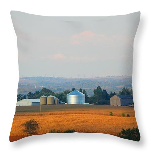 Sunset Throw Pillow featuring the photograph The Countryside by Davandra Cribbie
