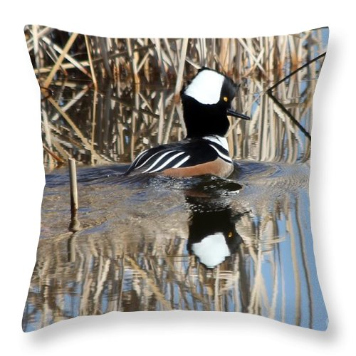Hodded Throw Pillow featuring the photograph The Dance by Lori Tordsen