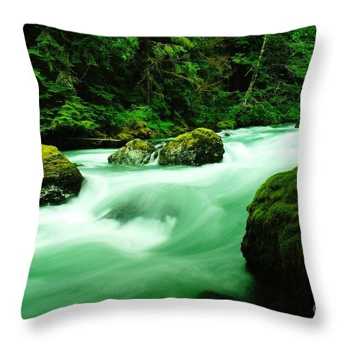 Rivers Throw Pillow featuring the photograph The Dosewallups River by Jeff Swan