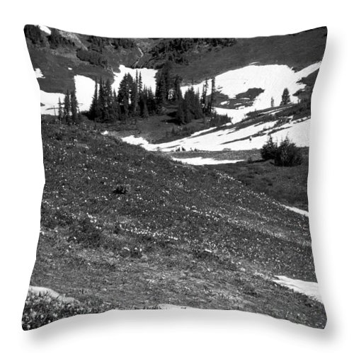 Mount Rainier Throw Pillow featuring the photograph The East Slopes Of Mount Rainier II by David Patterson