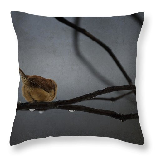 Ron Jones Throw Pillow featuring the photograph The End by Ron Jones