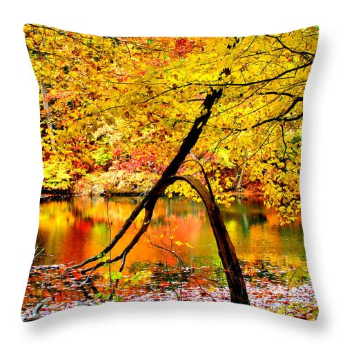 Autumn Throw Pillow featuring the photograph The Final Bough by Kristin Elmquist
