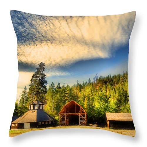 Barns Throw Pillow featuring the photograph The Fintry Barns by Tara Turner