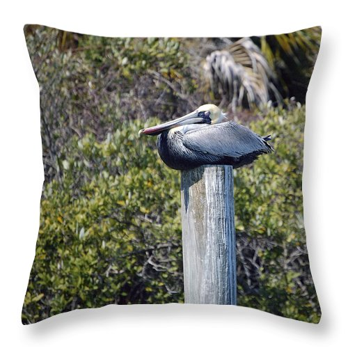 Pelican Throw Pillow featuring the photograph The Gatekeeper - Pelican by Donna Proctor