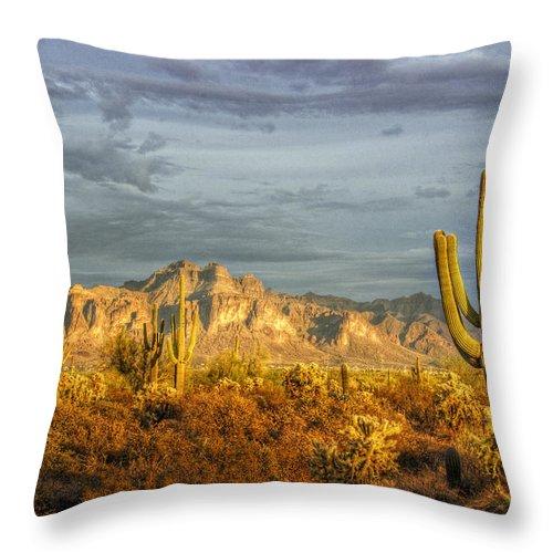 Sunset Throw Pillow featuring the photograph The Golden Glow II by Saija Lehtonen