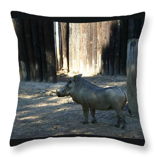 Warthog Throw Pillow featuring the photograph The Handsome Warthog by Nina Fosdick