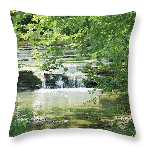 Landscape Throw Pillow featuring the photograph The Harpeth Brentwood Tennessee by Paul Shefferly