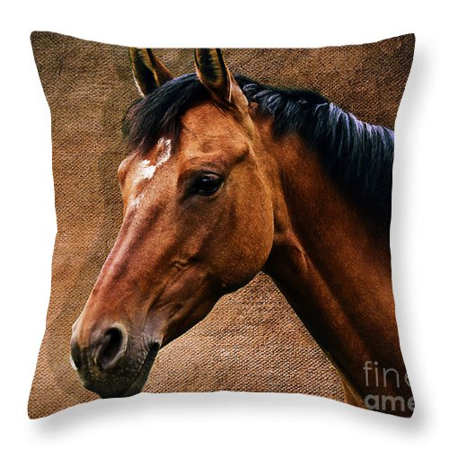 Horse Throw Pillow featuring the photograph The Horse Portrait by Angela Doelling AD DESIGN Photo and PhotoArt
