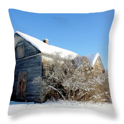 Rural Throw Pillow featuring the photograph The Johnsons by The Artist Project