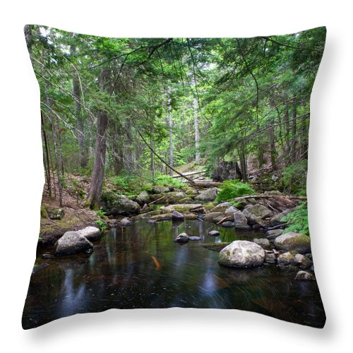 Water Throw Pillow featuring the photograph The Journey Begins by Greg DeBeck