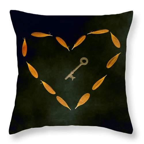 Heart Throw Pillow featuring the photograph The Key To My Heart by Joana Kruse