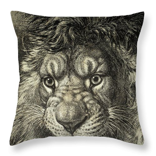 Beasts Throw Pillow featuring the photograph The Lion, King Of Beasts. From El by Ken Welsh