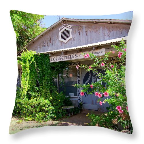 Mary Deal Throw Pillow featuring the photograph The Local Antique Store by Mary Deal