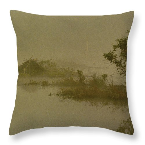 Pond Throw Pillow featuring the photograph The Lodge In The Mist by Skip Willits